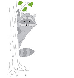 cute raccoon sitting on the tree vector image