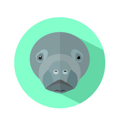 Dugong fish icon on white background vector