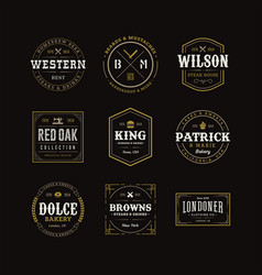 set retro vintage hipster sign emblem design vector image