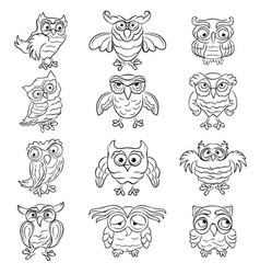 Set twelve amusing owls outlines vector
