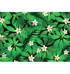 Tropical frangipani flowers on green leaves vector image