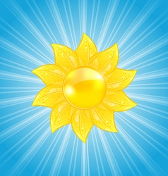 Abstract background with sun and light rays vector image vector image
