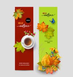 autumn advertising banner vector image