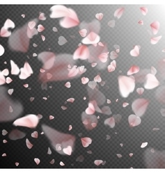 Falling sakura petals eps 10 vector