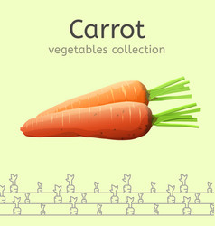 fresh orange carrot vector image