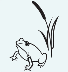 Frog near reed vector image