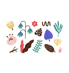 set abstract floral doodle elements vector image