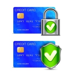 Credit Card Security vector image