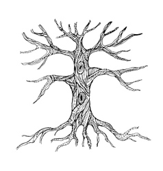 Ornate bare tree trunk with roots vector image
