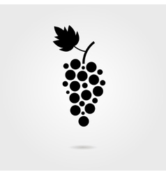 black grapes icon with shadow vector image vector image