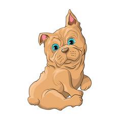 a cute dog vector image vector image