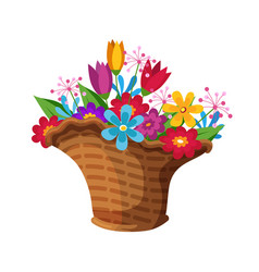 Bloom flower bouquet composition in wicker basket vector