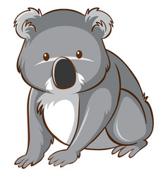 Cute koala on white background vector
