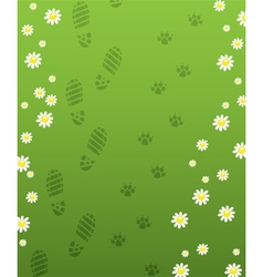 foot prints vector image
