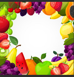 Fruits frame template vector