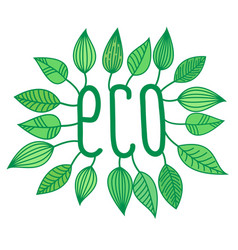 green eco sign in with growing leaves vector image