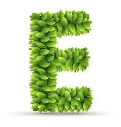 Letter e alphabet green leaves vector