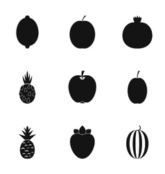 Orchard fruits icons set simple style vector