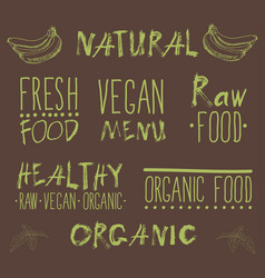 raw vegan food calligraphy vector image
