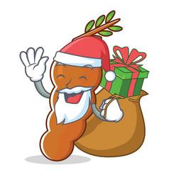 Santa with gift tamarind mascot cartoon style vector