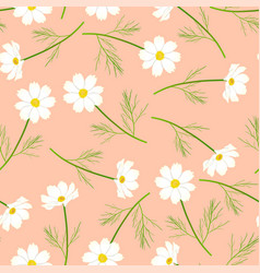 white cosmos flower on pink salmon background vector image
