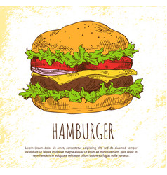 hamburger with fresh salad and buns color banner vector image