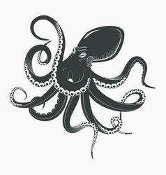 ocean octopus or underwater squid vector image