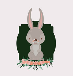 bunny in frame with ornament floral in colorful vector image
