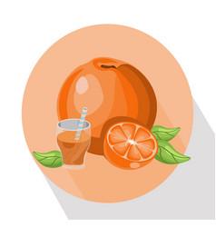 orange smoothie summer drink vector image vector image