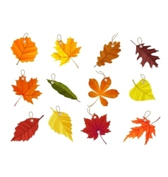 Autumn leaves tags isolated on black background vector image