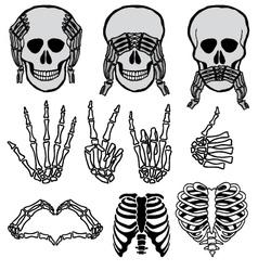 Halloween skull set vector