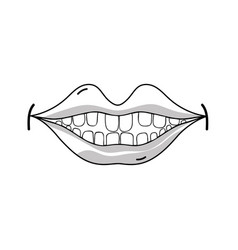 line happy mouth with teeth design icon vector image