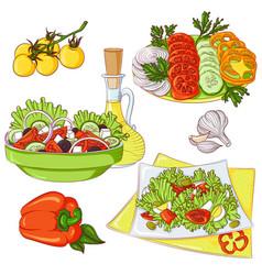Salads set color vector