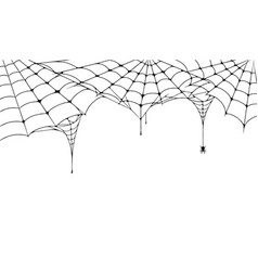 Scary spider web halloween festive background vector