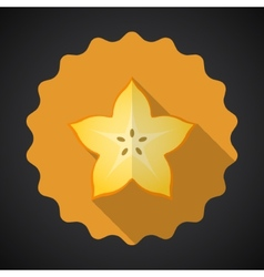Star Fruit Flat Icon with long shadow vector image vector image