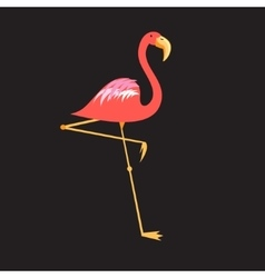 A beautiful red flamingo vector