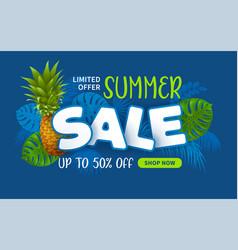 Advertising banner about seasonal summer sale vector