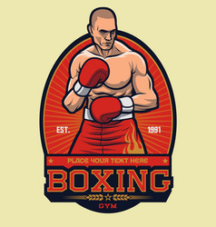 boxing fighter stance with sunray background vector image