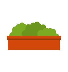 bush in a pot icon vector image