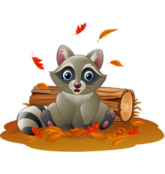 Cartoon raccoon in the autumn weather vector