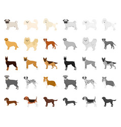 Dog breeds cartoonmono icons in set collection vector
