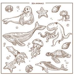Sea and ocean animals or fish sketch vector