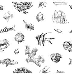 seamless hand drawn seashells fish crabs corals vector image