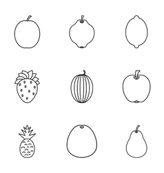 Types of fruit icons set outline style vector