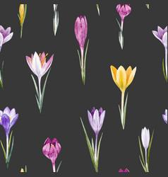 Watercolor crocus floral pattern vector