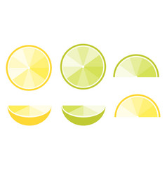 lemon and lime slices flat icons for food vector image