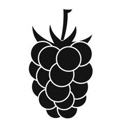 blackberry fruit icon simple style vector image vector image