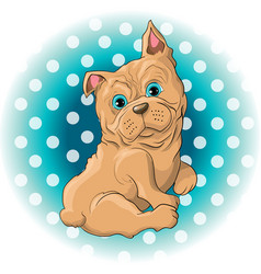 a cute dog french bulldog vector image