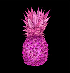 bright pink pineapple on black bg full color vector image