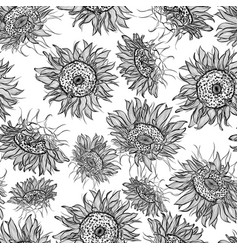 Pattern with sunflowers vector